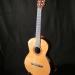 guitare cèdre palissandre des Indes